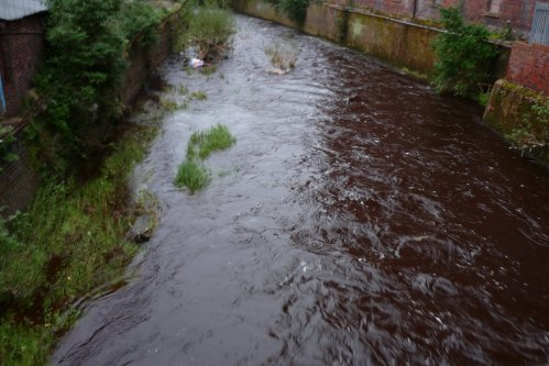 Water of Leith after rain