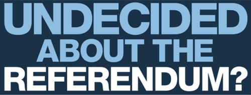 Undecided About Referendum