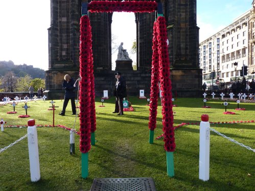 Poppies made by LHPF and displayed by Poppy Scotland