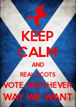 Keep calm and vote whichever