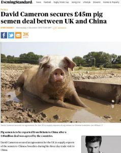 David Cameron, pig semen