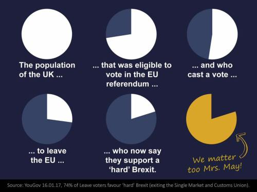 The pie chart of voters